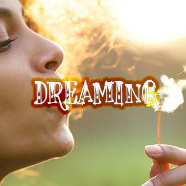 dreaming-grid-homepage