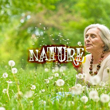 nature-grid-homepage