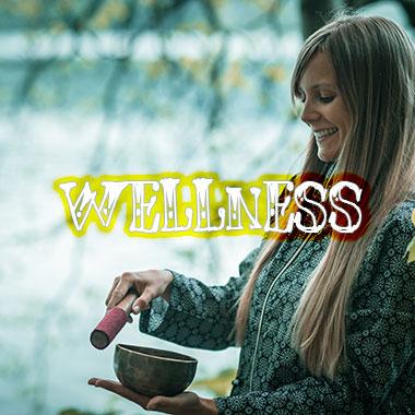 wellness-grid-homepage