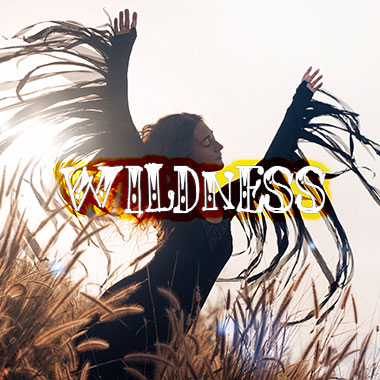 wildness-grid-homepage