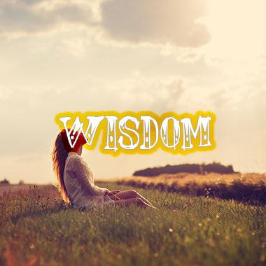 wisdom-grid-homepage